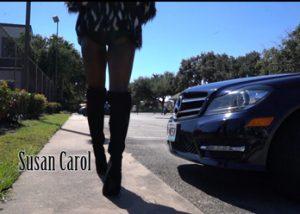 Houston Music Videographer - Susan Carol Music Video photo